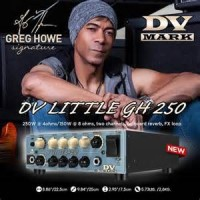 DV Mark DV LITTLE GH 250