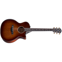 TAYLOR 324 CE BUILDER'S EDITION